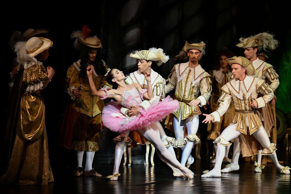 Baletní pohádka o Šípkové Růžence v Jihočeském divadle