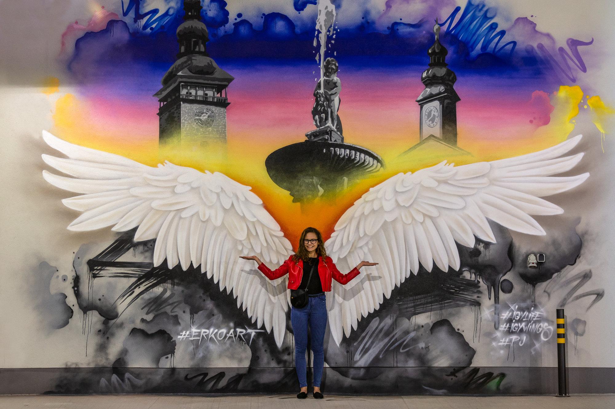 IGY dalo Budějovicím křídla
